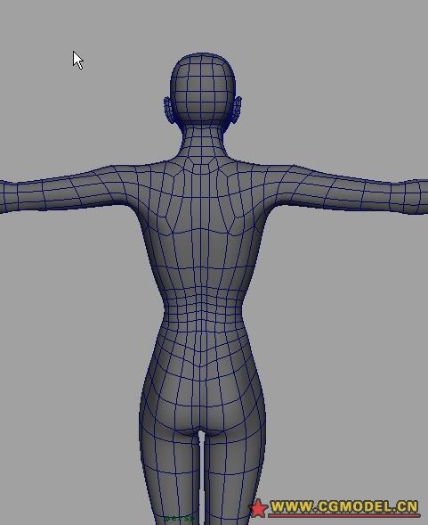 女性人体y_女性建模人体布线