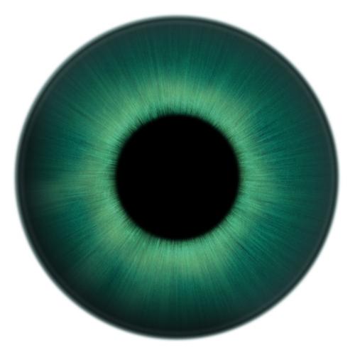 贴图素材 眼球贴图