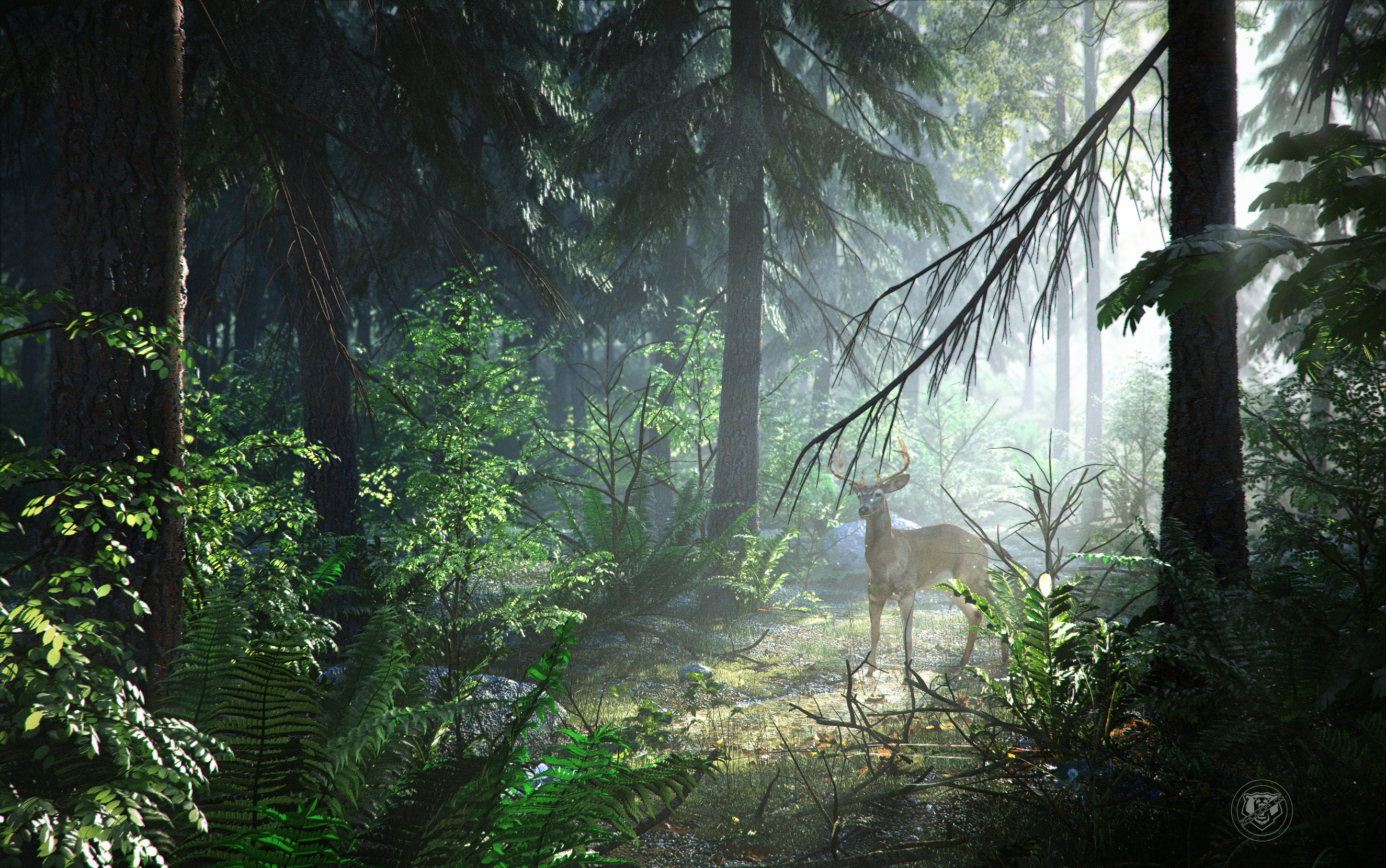 壁纸 风景 森林 桌面 2650_1660