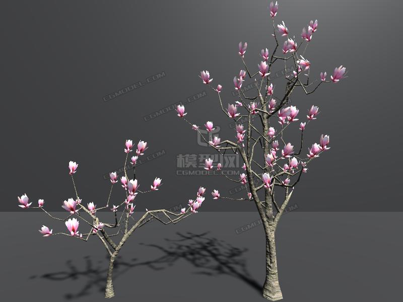 低面腊梅树低面木兰花树桃花林红梅梅花雪景春节舞狮简单儿童画图片