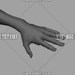 写实角色手部基础模型 男人 人物 Dmxdmx Cg模型网