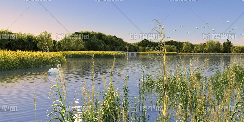 湿地公园景观设计_湿地景观造价_湿地植物与景观