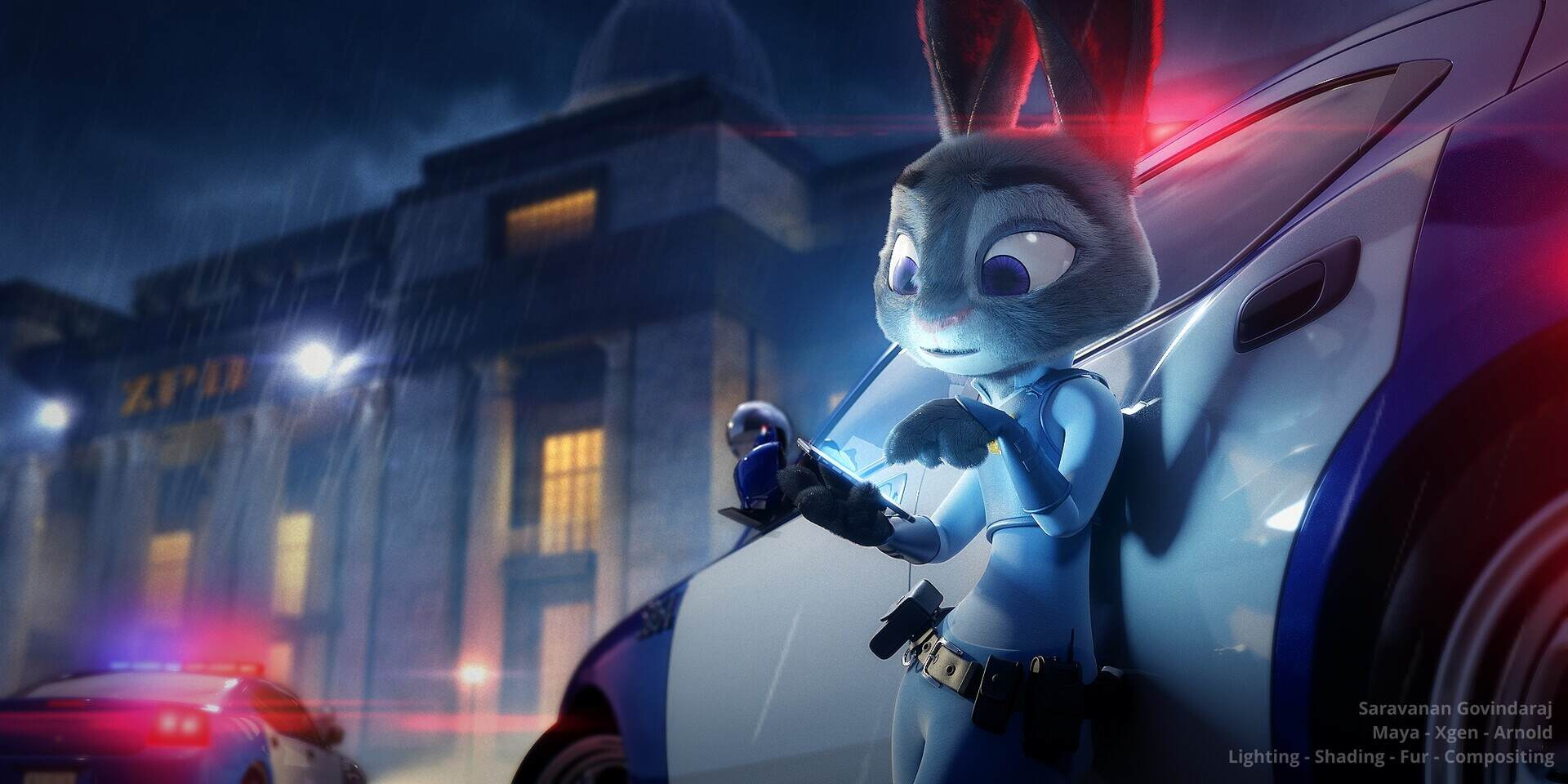 Judy's Case.jpg